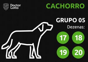 Grupo 05 - Dezenas do Cachorro - Jogo do Bicho