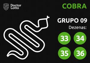 Grupo 09 - Dezenas da Cobra - Jogo do Bicho