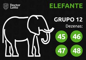 Grupo 12 - Dezenas do Elefante - Jogo do Bicho