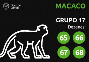 Grupo 17 - Dezenas do Macaco - Jogo do Bicho