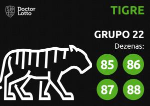 Grupo 22 - Dezenas do Tigre - Jogo do Bicho