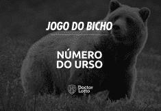 urso no jogo do bicho
