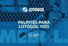 programacao lotogol 1025 concurso palpites