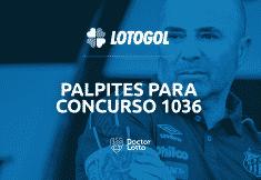 lotogol 1036 programacao e palpites