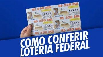 https://br.doctorlotto.com/wp-content/uploads/2019/02/Como-conferir-o-bilhete-da-Loteria-Federal-360x200.jpg