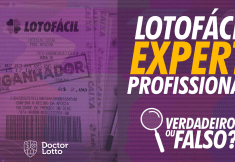 thumb lotofacil expert profissional